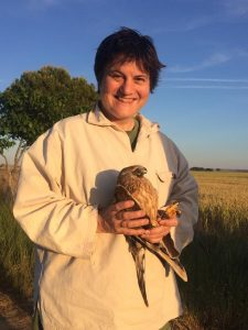 Ms Beatriz Arroyo with female pallid harrier C|3, photo by  François Mougeot